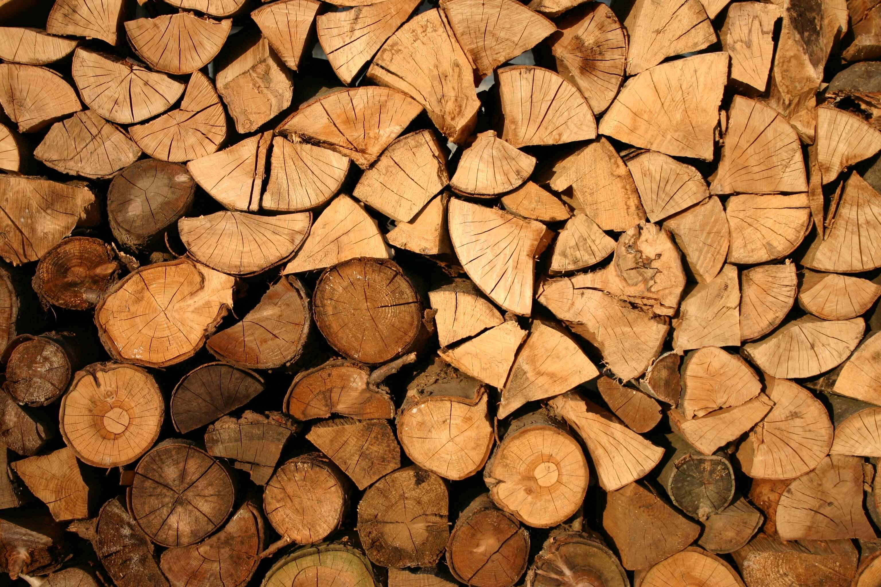Tvrdé dřevo - ilustrační foto